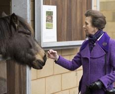 Princess Royal stroking a pony